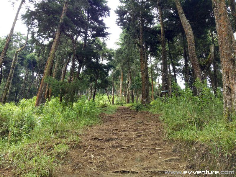 gunung-sumbing-trekking-2